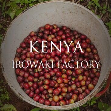 ロクメイコーヒー スペシャルティコーヒー 焙煎豆 ケニア イロワキ ファクトリー 250g 【 コーヒー豆 スペシャリティコーヒー 粉 水出し ストレートコーヒー シングル おしゃれ 高品質 高級 人気 】