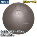 【ニシ・スポーツ NISHI】砲丸投げ 練習用砲丸 5.0kg G1154 陸上 投てき 投擲 鉄球