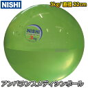 【ニシ・スポーツ NISHI】アンバランスメディシンボール 3kg 直径22cm NT5923 筋トレ 筋力トレーニング 水入りボール