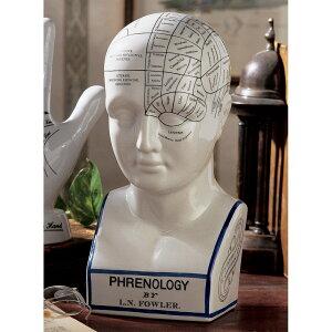 Physiologie osseuse occidentale Apparence du visage Divination humaine image de tête de divination antique Sculpture statue Frénologie Modèle Objet Design Fabrication toscane (article importé)