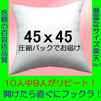 ヌードクッション45x45cm単体