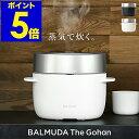 バルミューダ ザ・ゴハン 炊飯器【正規品