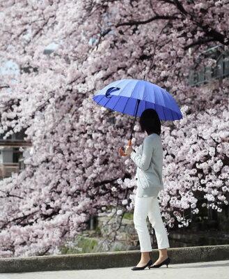 なんだか番傘みたいな雰囲気。24本骨傘