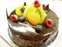 輝くショコラ&フルーツ5号サイズ ショコラクレーム(バースデーケーキ)(お中元)(チョコレートケーキ ...
