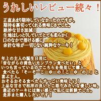 母の日モンブランケーキ5号4〜5名用父の日バースデーケーキ誕生日ケーキホールケーキ