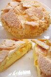 ざっくり割れパイと、とろ〜りクリームがあなたをとりこに!ボリュームたっぷり甘さ控えめスイスパイ【送料無料100215】 10P15Jan10