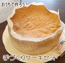 【送料無料】おうちで作ろう!手作り デコレーションケーキセット スポンジ 生クリーム 絞り袋 バースデーケーキ 巣ごもり おうち時間 おうち遊び 子供 手づくり