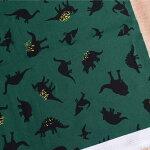 恐竜プリント生地【10cm単位の切売り】ARTGALLERYFABRICS/DinomaniaNeon/USAコットン(AGF-EST-86503)