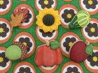 【輸入ボタン】ButtonsGaloreボタン6個セットFallFriends(HarbestHappenings)落ち葉/ひまわり/いちじく/どんぐり/かぼちゃ/りんご