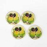 【ヨーロッパ製ボタン】オウムボタン23mm1個単位での販売です。(JIM-12820-parrots-23mm)