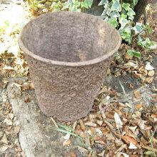 ワンダーポット植え替えサービス付き(こちらはバラ苗ご注文1鉢に付き1個ご購入となります。)【バラ】【バラ苗】