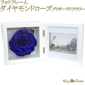 大輪の青いバラ写真立て