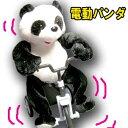 三輪車乗りパンダ