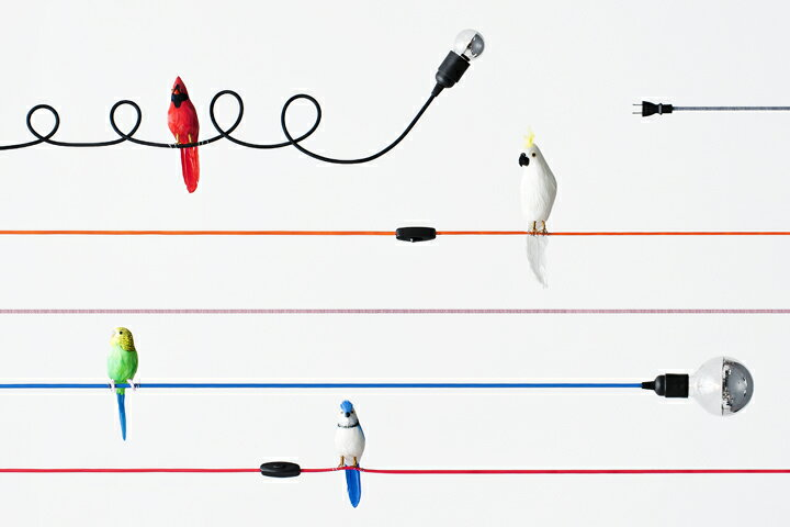 ソケット+カラーコード照明:LineMe ACCENT ラインミー アクセント(コンセント仕様)壁、床で使用可能な照明 ファブリック照明コード【ポイント】: