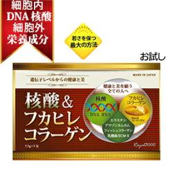フカヒレコラーゲン&核酸サプリ