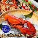 【期間限定6499円】 ロブスター オマール海老ボイル済 550g×2 海老エビ 海産物 ...
