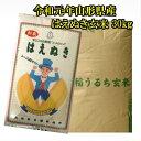 新米 送料無料 令和元年 山形県産 はえぬき 玄米 30kg...
