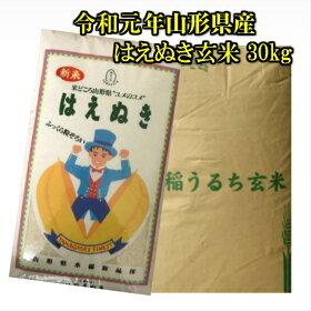 30年山形県産はえぬき玄米30kg