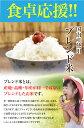送料無料 ブレンド米 10kg 国内産複数原料米 白米 2