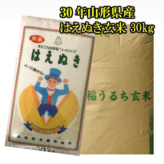 30年 山形県産 はえぬき 玄米 30kg 米
