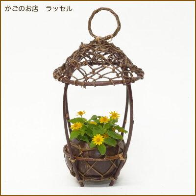 【当店オリジナル】おうちみたいなフォルムとココナッツが可愛い♪花はもちろんグリーンを飾っ...