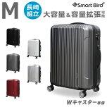スーツケースMサイズ2040