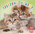 2017年版ロシアカレンダー