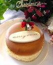 飛騨高山産蜂蜜入り!しっとりクリスマスチーズケーキ12cm・4号 【マラソン2011冬_食品】
