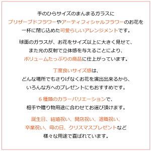 プリザーブドフラワーギフト『プチヴェールローズ』8