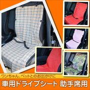 ドライブ シートベルト