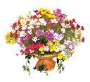 コスモスサイクルプランタ[MRS08-07006]|造花 フェイクグリーン 人工植物 人工観葉植物 デコレーション 店舗装飾 飾り 飾りつけ 飾り付け 装飾 コスモス プランタ フラワーアレンジ