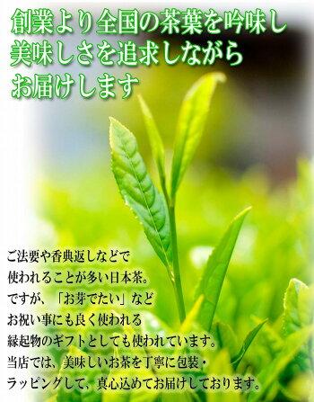 日本茶玉露ギフト2