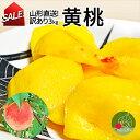 山形県産 黄桃 3kg(13〜16玉前後)ちょっと訳ありだから お買い得 硬い桃 固い桃 や 柔らか ...