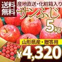 2016-ring-s-5kg