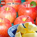 りんご サンふじ 10kg 山形県産 サンふじ 訳ありでは不...