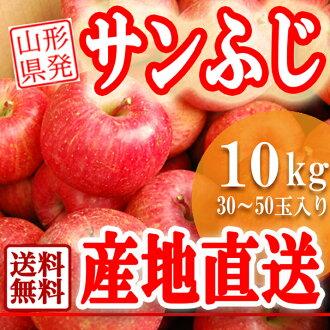 早期的富士,開始交付翻譯山形 San 富士蘋果農場 10 公斤新鮮蘋果是確定經濟的蘋果醬計畫從蘋果國內蘋果 8 月下旬 10P01Oct16