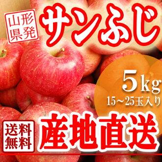 翻譯和山形 San 富士蘋果農場 5 公斤新鮮的蘋果和大蘋果聖富士蘋果果醬也 OK 計畫從 9 月蘋果國內蘋果年底