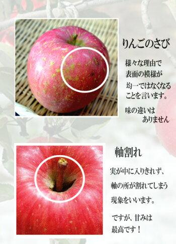 りんご13