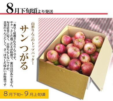 りんご14