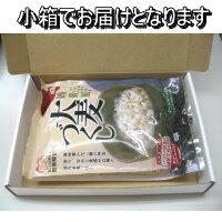 大麦づくしアイコン(メール便)002