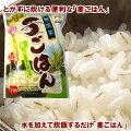 eco/麦飯