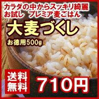 大麦づくしお徳用500g
