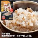 【 ネコポス 送料無料 】 発芽押麦 250g 50gスティック5本入 便利 な 使い切り スティックタイプ 大麦 もちむぎ 健康 血圧 腸活 食物繊維 ギャバ
