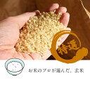 令和元年(2019年)産 北海道産 ふっくりんこ 玄米 30kg 送料無料
