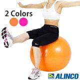 アルインコ エクササイズボール EXG124 55cm