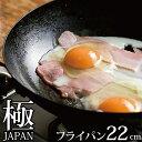 リバーライト 極 JAPAN 鉄 フライパン 22cm 【IH対応】【日本製】 JAN: 4903449125036 【送料無料】