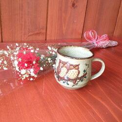 カーネーションと金澤珈琲くりーむクッキーと金箔入りコーヒーと九谷焼マグカップふくろうギフトセット