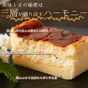 大感謝価格 プレゼントマツコの知らない世界で大反響バスクチーズケーキ ロングタイプ 冷凍 第4のチーズケーキ マツコの知らない世界 チーズケーキ バスチー 北海道産 濃厚チーズ
