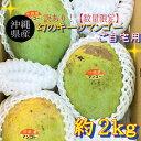 【訳あり】【送料無料】沖縄産キーツマンゴー2kg(2玉〜5玉