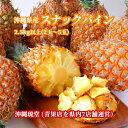 【送料無料・即発送可】沖縄県産スナックパイン2.5kg以上(